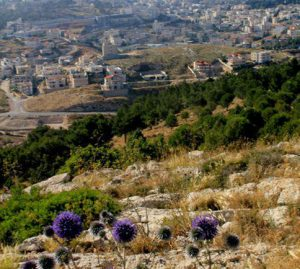 overlooking Israel