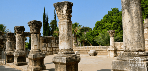 Capernaum Holy Land Tour