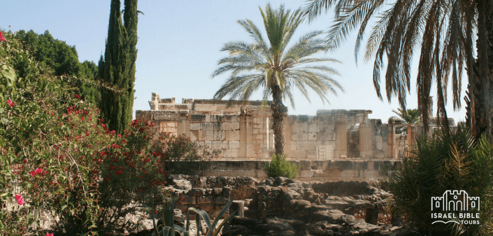 Capernaum Tour of Holy Land, Israel Bible Tours photo
