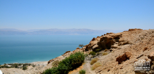 En Gedi on Israel Bible Tours