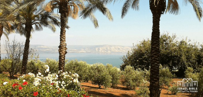 Overlooking Sea of Galilee, Israel Bible Tours photo