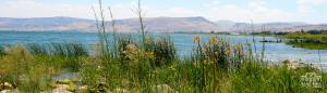 Galilee taken on Israel Bible Tours