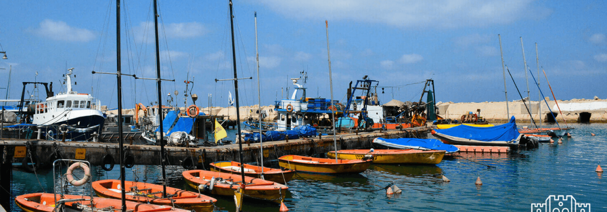 Jaffa Harbor, Israel Bible Tours photo