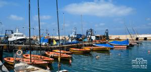Jaffa Harbor, Israel Bible Tours photo