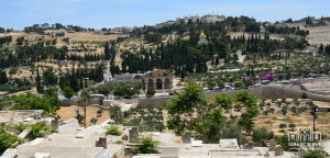 Mt of Olives on Holy Land Tour on Israel Bible Tours